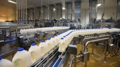 दूध, तेल, मसला र डेरीजन्य उद्योगमा बढी मिसावट, उपभोक्ता ठग्दै आइरहेका पर्सा र बाराका चार उद्योगमाथि मुद्दा दायर