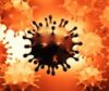 विदेशमा रहेका ६६  हजार १९ जना नेपाली कोरोना संक्रमित